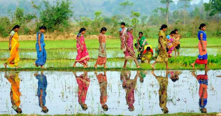 /media/ajwa/Dalit_Farmers.jpg