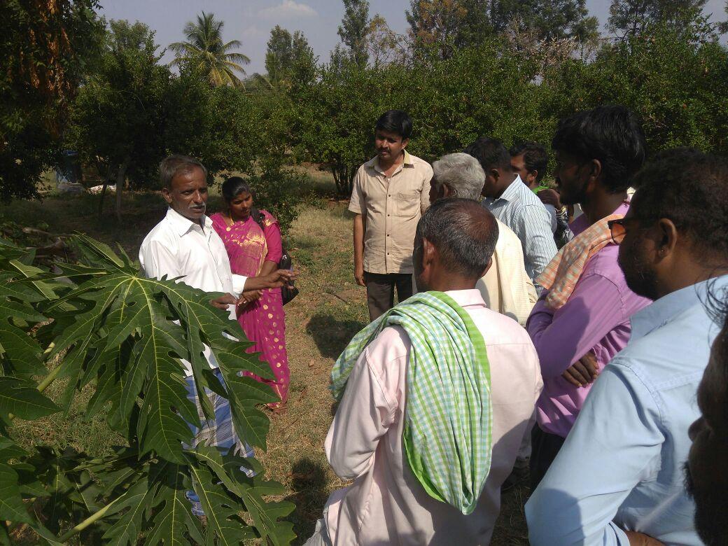 /media/bsrds/BRDS-activity-visit_to_IIHR_Bengalure.jpg