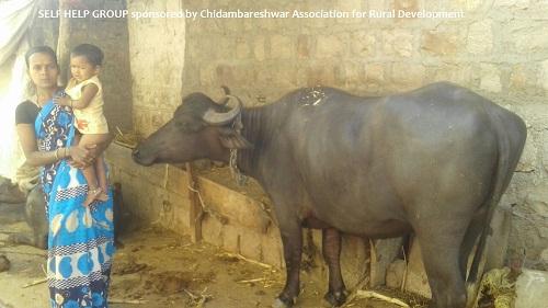 /media/card/1NGO-00013-Chidambareshwar-Main_page-img_1.jpg