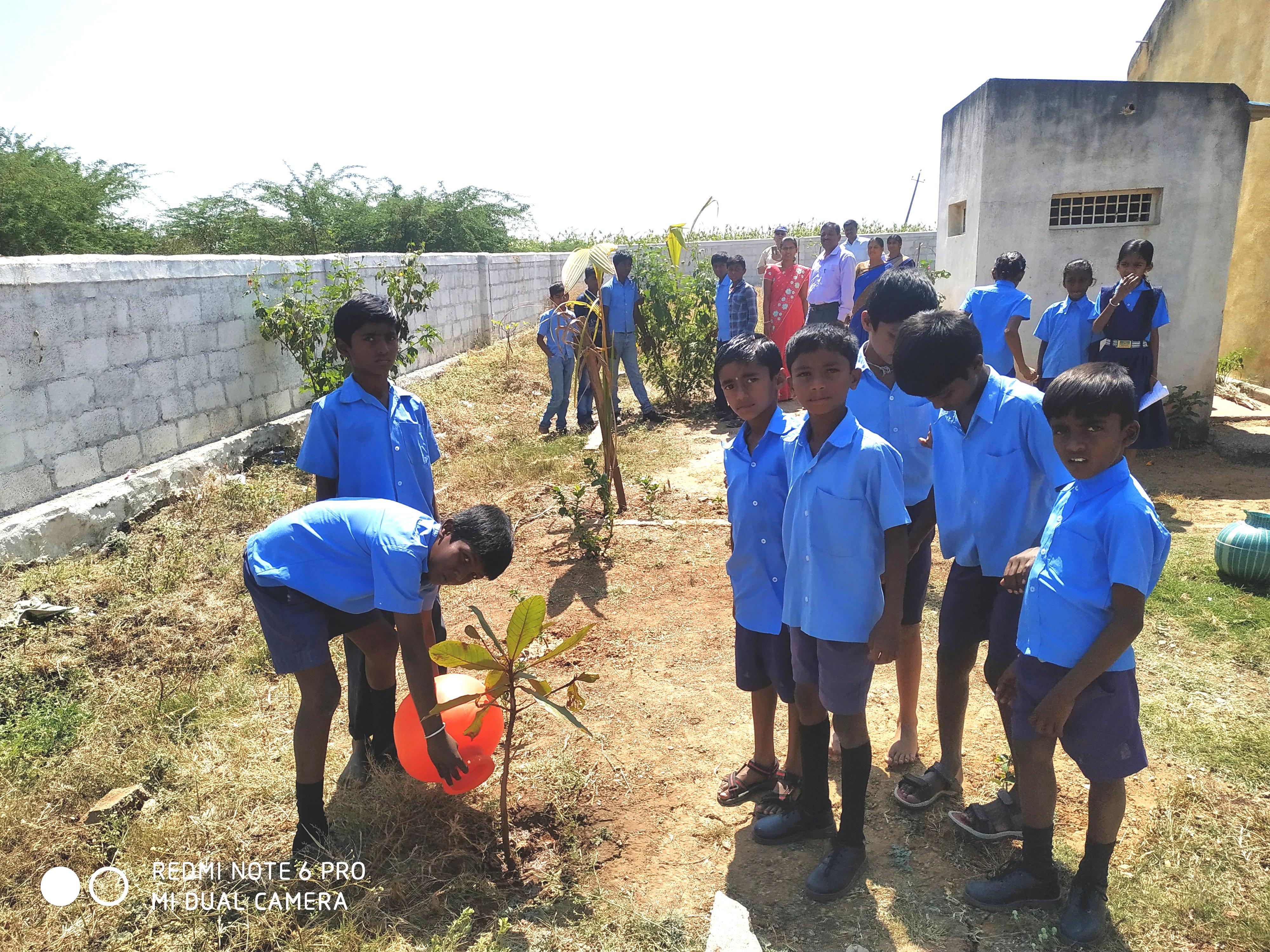/media/cf/Tree_plantation_programme_17.02.2020.jpg
