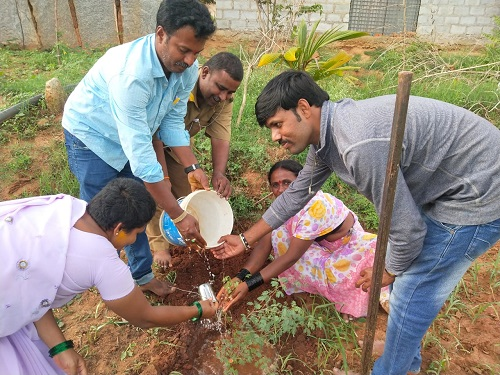 /media/chandra/1NGO-Chandramouleshwara-plants.png