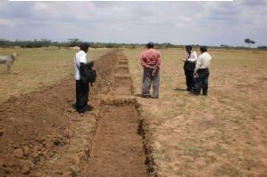 /media/irads/1NGO-00367-IRADS-Activities-Soil_and_Water_Conservation.JPG