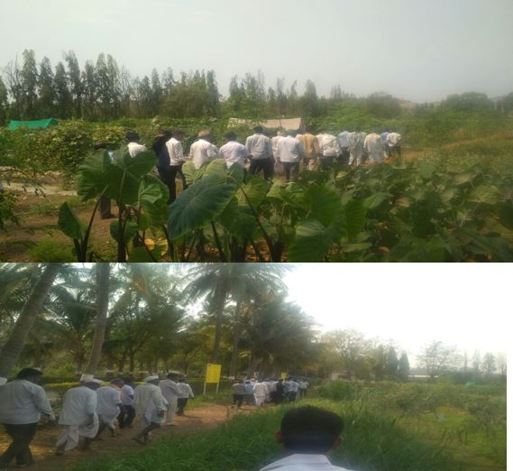 /media/manasa/1NGO-00299-Manasa_Nagar_and_Grameen_Abhivruddi_Samsthe-Tour_Study-12.jpg