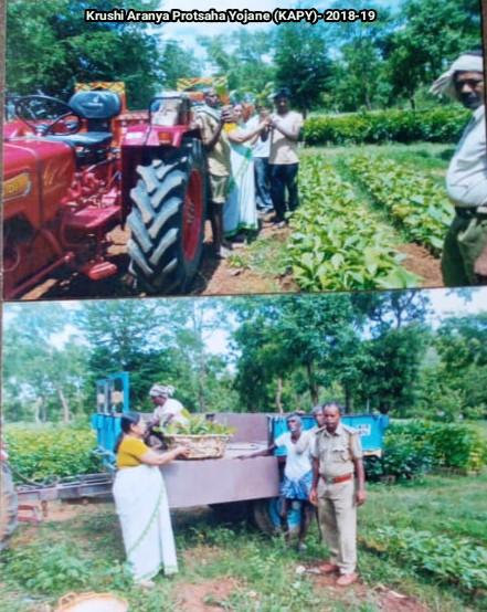 /media/saraswati/1NGO-00257-Shri_Saraswati_Mahila_Mandal-Activity-Forest_Department_work.jpg.jpg