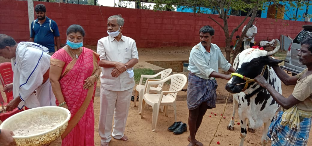 /media/sgt/1NGO-00358-Swarnabhoomi_Goushala_Trust-Activities-Vijaya_Sankeshwar_Visiting_Our_Goshala.jpeg
