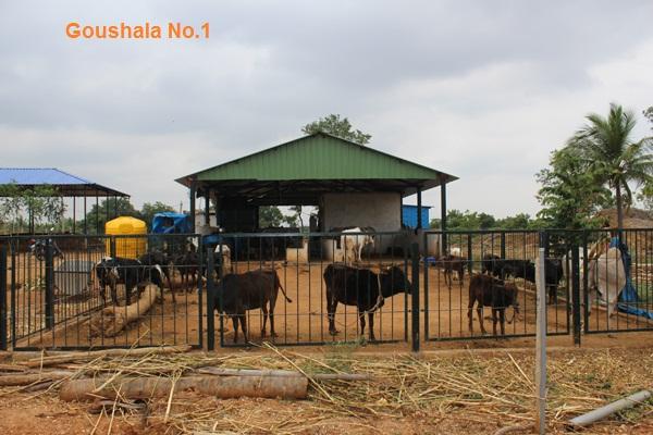 /media/sgt/1NGO-00358-Swarnabhoomi_Goushala_Trust-Board-Main_Page-3.JPG