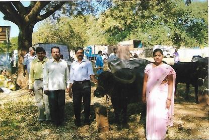 /media/sspat/1NGO-00148-Samajika_Shaikshanika_Parisara_Abhivrudhi_Trust-swarnajayanti_program.jpg